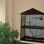 """Seniorenpflegezentrum """"Am Kottmar"""" - Haustierhaltung ist möglich."""
